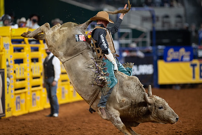 2020NFR_R09_BR_Brady Portenier_PotLicker_Stangle-7153