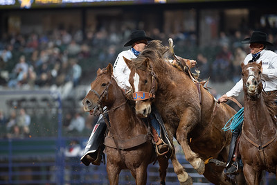 2020NFR_R02_SB_Chase Brooks_HellOnHooves_Stangle-6446
