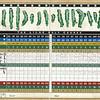 lilac_scorecard4_032401
