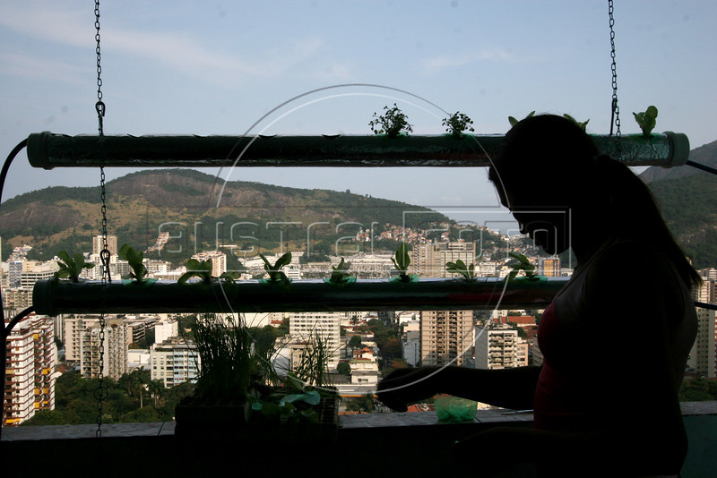 Slum resident Tatiana ??  installs plants in a hydoponic grower in the Santa Marta slum in Rio de Janeiro, August 19, 2005.  Using hydroponics, a little hard labor and lots of ingenuity, Temple University students spend their vacation time helping to build and install a farming apparatus that turns the walls and roofs of slum residents into small gardens. The technology, part of a broader environmental movement known as green roofing, helps residents compensate for land shortages by supporting miniature plant nurseries from their homes. Green roofing is popular in Europe for its environmental and aesthetic benefits, but this is an initial attempt to show that the technology can also provide sustenance for the poor. (Australfoto/Douglas Engle)(Australfoto/Douglas Engle)(Australfoto/Douglas Engle)