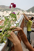 Brazilian agronomist Luiz Dias da Mota, background, helps install plants in a hydoponic grower in the Santa Marta slum in Rio de Janeiro, August 19, 2005.  Using hydroponics, a little hard labor and lots of ingenuity, the Temple University students spend their vacation time helping locals build and install a farming apparatus that turns the walls and roofs of slum residents into small gardens. The technology, part of a broader environmental movement known as green roofing, helps residents compensate for land shortages by supporting miniature plant nurseries from their homes. Green roofing is popular in Europe for its environmental and aesthetic benefits, but this is an initial attempt to show that the technology can also provide sustenance for the poor. (Australfoto/Douglas Engle)(Australfoto/Douglas Engle)(Australfoto/Douglas Engle)