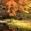 #4 Gregg Lake, Antrim N.H.