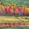 #6 Gregg Lake, Antrim N.H.