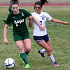 Taylor Truman's Isabel Sanchez (3) tries to keep Allen Park's Ashley Armstrong (9) off the ball. Armstrong scored the game's only goal. The Jags blanked Truman 1-0 on Wednesday to stay undefeated early in the season. (MI Prep Zone photo gallery by RYAN DICKEY)