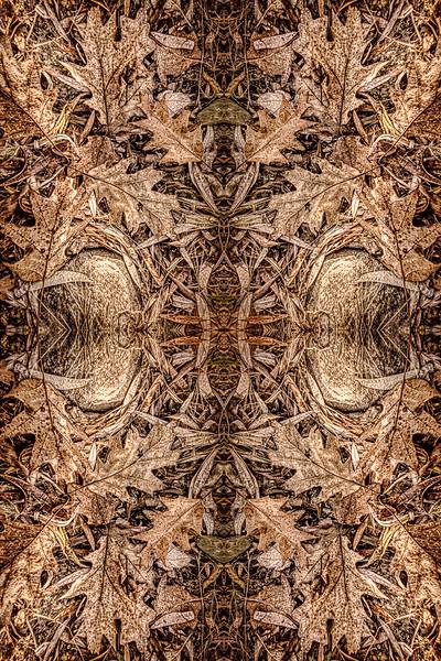Mystic Forest Floor