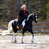 COPYRIGHT NORTHERN HORSE PHOTOGRAPHY