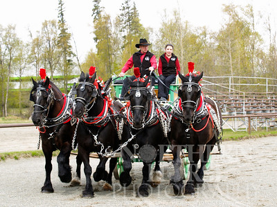 2007 - HORSE DRAWN CARRIAGE COMPANY