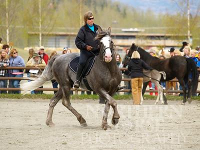 2007 - Pegasus Acres