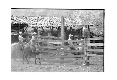 Cowboys on the Cooperativa,