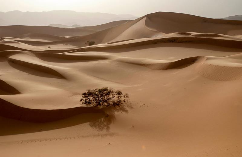 Tenere desert.