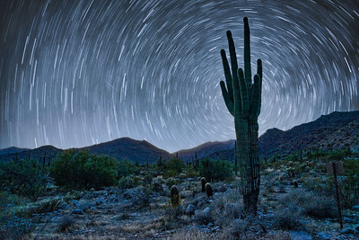 TWIN SAGUARO STAR TRAILS