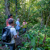 so much to see and learn about along the trails.