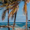 Nisbet's beach hammocks