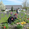 The sisters of Sigma Lambda Sigma service sorority help weed and clean the flower beds of Somerset Farm, a condominium community for seniors age 55 and older, Saturday in Sycamore. NIU student, faculty, staff and alumni volunteers spent the day planting, painting, cleaning, sorting and assisting with events and various other tasks around the county as part of NIU Cares Day.