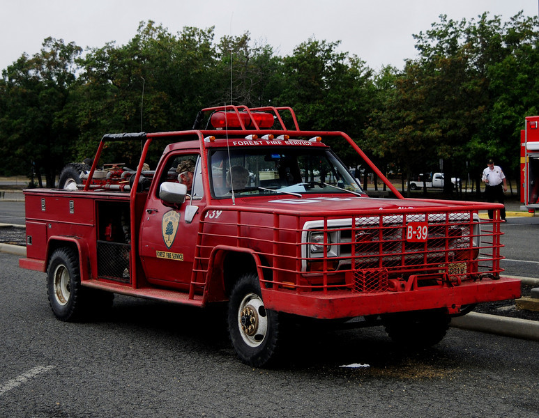 NJ State  Forest Fire Service  Div B    1990 Dodge 250/250