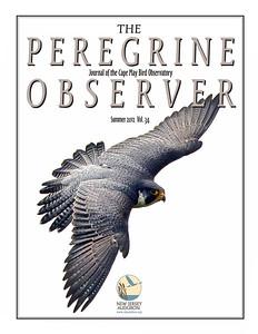 Peregrine Observer Sum 2012