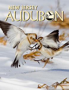 Autumn 2012 NJ Audubon cover