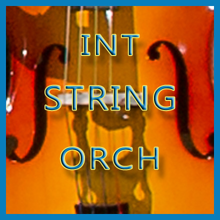 NJMEA INT STRING ORCH!