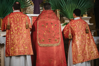 _NIK2740 Palm Sunday FSSP