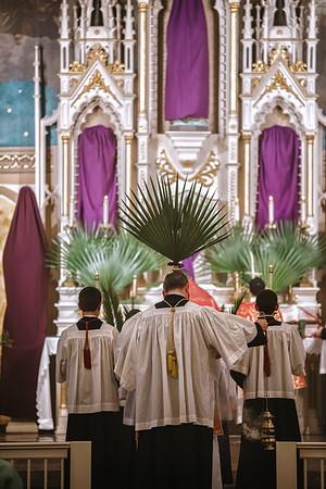 _NIK2506 Palm Sunday FSSP-2