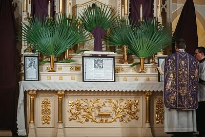 _NIK2860 Palm Sunday FSSP