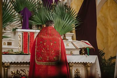 _NIK2492 Palm Sunday FSSP