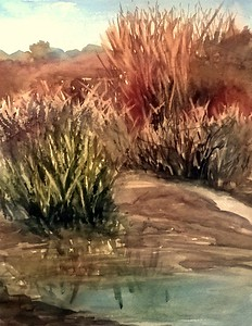 """Along the Rio (plein air) ©Rachel Murphree"