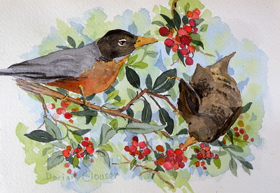 Dorian Clouser - Robins and Pyracantha Berries - 2017 - SC