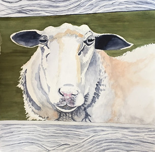 "Churchill, Laurie ""Ovine Suite: Aretha"" 2018-10, ABQ"