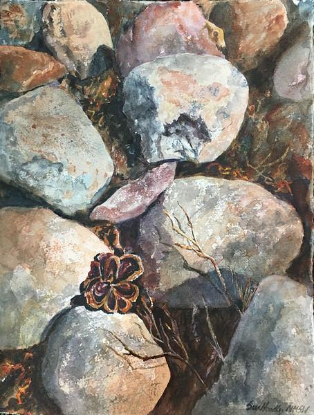"Hoadley, Sue ""Desert Treasure"" 2018-05, ABQ"