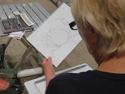 Jeannie's Crab drawing - NMSU Zuhl Museum - SC - 20180116