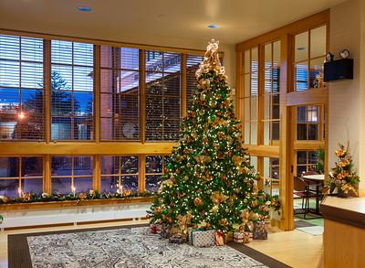 Noelker Hull Christmas Tree-6