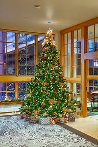 Noelker Hull Christmas Tree-3
