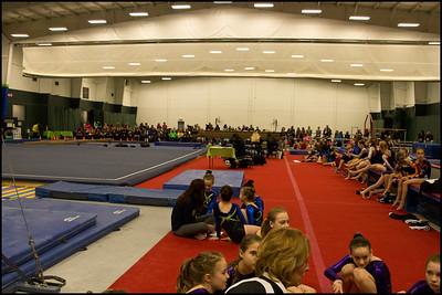E 785 Gymnastics Meet 3 8 15