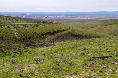 Breezley Hills_-29