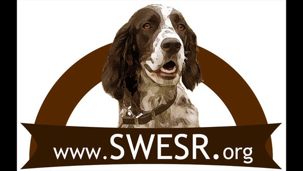 About Southwest English Setter Rescue - Final