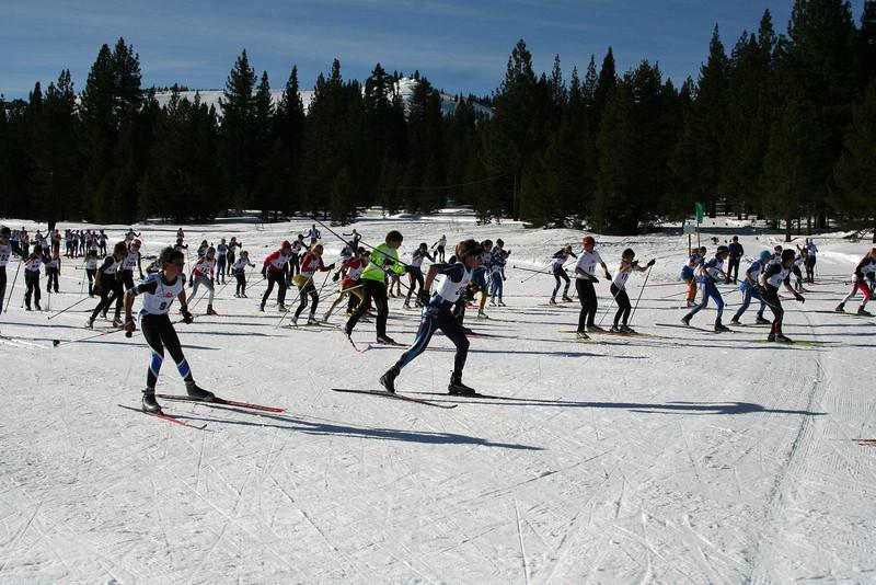 td-skogs2011_5K-start2