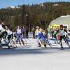skogsloppet2015_6k-race-start4