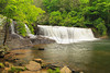NC BREVARD DUPONT STATE FOREST HOOKER FALLS JUNEABA_MG_6738bMMW