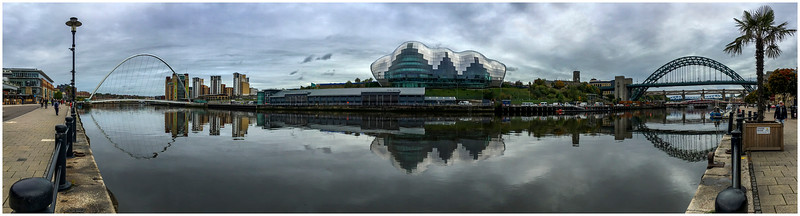 CALM QUAYSIDE PANORAMA WITH PALM TREE - A COMPULSION