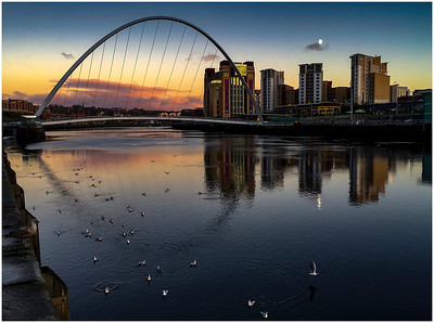 QUAYSIDE MOONRISE, AND SEAGULLS PARADE ON THE EBB TIDE