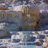 MAMMOTH HOT SPRINGS - YELLOWSTONE