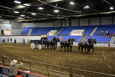 Gores Percheron 6 draft horse team hitch and wagon - 2017 ND State Fair - 7-22-17