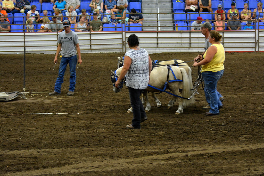 2017 ND State Fair - Pony pull contest - 7-22-17 - their first time entering the Fair competition!