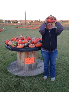 Berry Acres Pumpkin patch and corn maze near Minot, ND