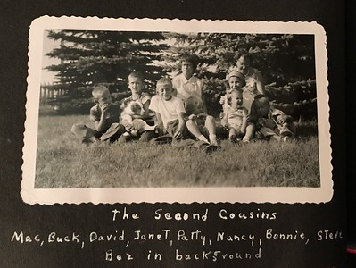 The second cousins