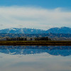 WINTER RICE FIELD AND THE COAST RANGE FROM 1-5, COLUSA COUNTY.