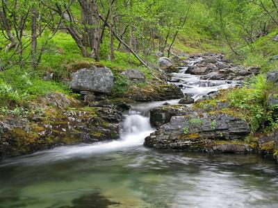 Porsanger 05/07/2009    --- Foto: Jonny Isaksen