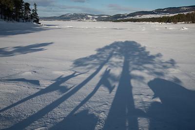 Steinsodden naturreservat  08/02/2015   --- Foto: Jonny Isaksen