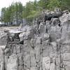 Steinsodden naturreservat  16/05/2013   --- Foto: Jonny Isaksen